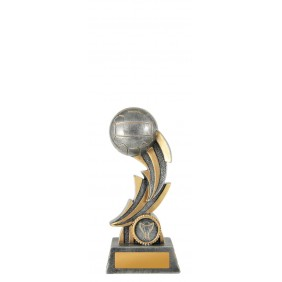 Netball Trophy 1001-8B - Trophy Land