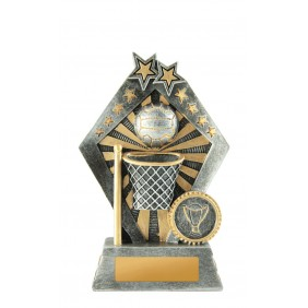 Netball Trophy 1003-8B - Trophy Land