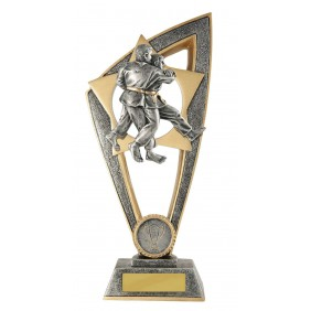 Martial Arts Trophy 10C-FIN11J - Trophy Land