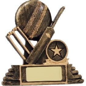 Cricket Trophy 11110 - Trophy Land