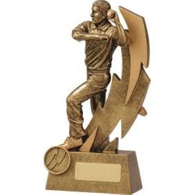 Cricket Trophy 11611D - Trophy Land