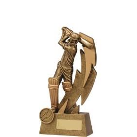 Cricket Trophy 11614A - Trophy Land