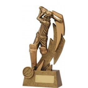Cricket Trophy 11614C - Trophy Land