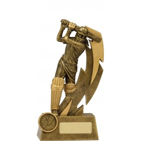 Cricket Trophy 11616B - Trophy Land