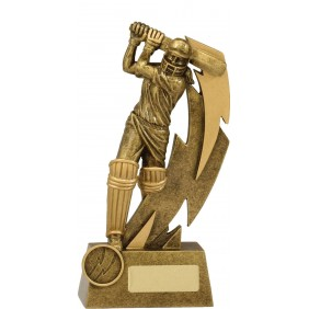 Cricket Trophy 11616C - Trophy Land