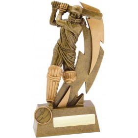 Cricket Trophy 11616D - Trophy Land