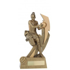 Netball Trophy 11691D - Trophy Land