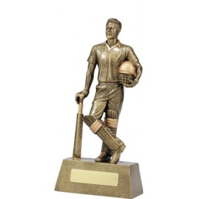 Cricket Trophy 11714D - Trophy Land