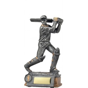 Cricket Trophy 12014 - Trophy Land