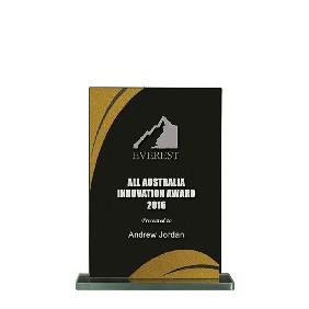 Glass Award 1255-1BKG - Trophy Land