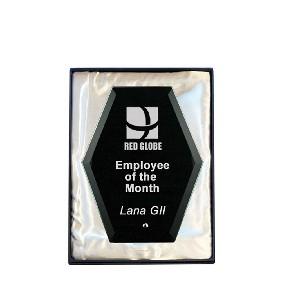 Glass Award 1271-1BK - Trophy Land