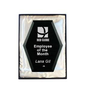 Glass Award 1271-2BK - Trophy Land