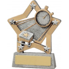 Swimming Trophy 12930 - Trophy Land