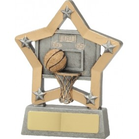Basketball Trophy 12934 - Trophy Land