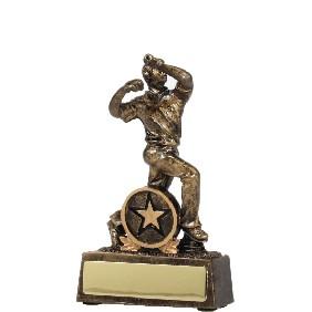 Cricket Trophy 13115 - Trophy Land