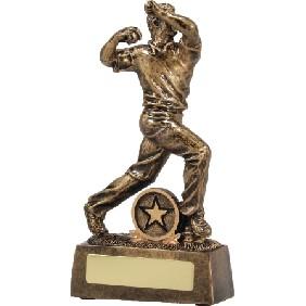 Cricket Trophy 13315 - Trophy Land