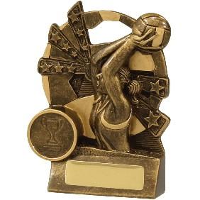 Netball Trophy 13891L - Trophy Land