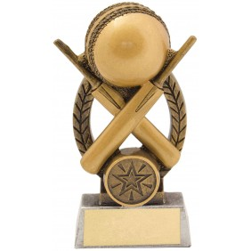 Cricket Trophy 14340B - Trophy Land