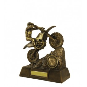 Motorsport Trophy 306-1 - Trophy Land