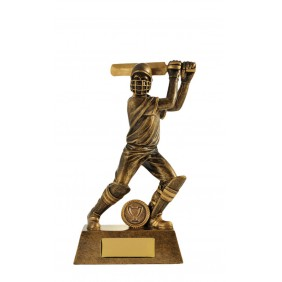 Cricket Trophy 742-1BATD - Trophy Land