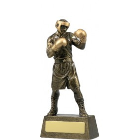 Boxing Trophy A1249B - Trophy Land