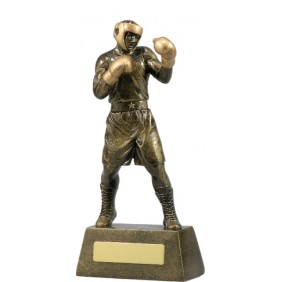 Boxing Trophy A1249C - Trophy Land