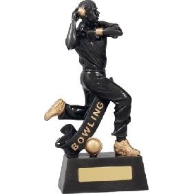 Cricket Trophy A1255D - Trophy Land