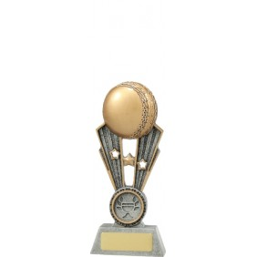 Cricket Trophy A1451AAA - Trophy Land