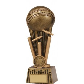 Cricket Trophy A1647C - Trophy Land