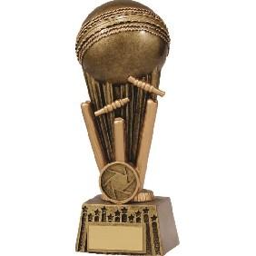 Cricket Trophy A1647D - Trophy Land