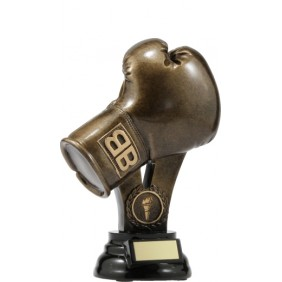 Boxing Trophy A307A - Trophy Land