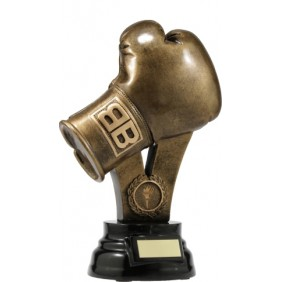 Boxing Trophy A307B - Trophy Land