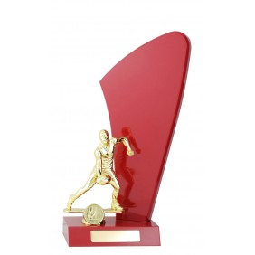 A F L Trophy AR1089 - Trophy Land