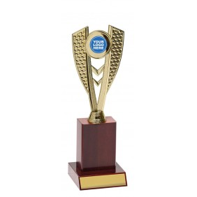 A F L Trophy AR1107 - Trophy Land