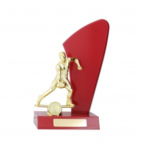 A F L Trophy AR642 - Trophy Land