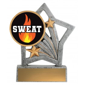 Exercise Trophy ASF210 - Trophy Land