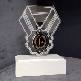 Custom Awards Gallery Acrylic Ribbon Trophy - Trophy Land
