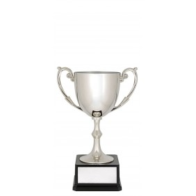 Metal Trophy Cups C0189 - Trophy Land