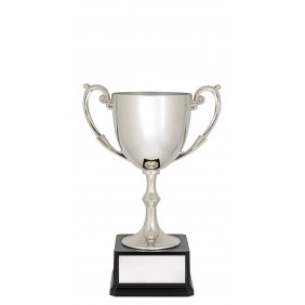 Metal Trophy Cups C0190 - Trophy Land