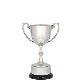 Metal Trophy Cups C0194 - Trophy Land