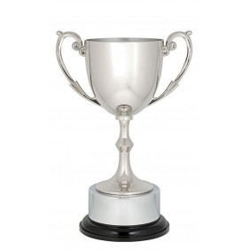 Metal Trophy Cups C0196 - Trophy Land