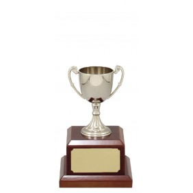 Metal Trophy Cups C0202 - Trophy Land