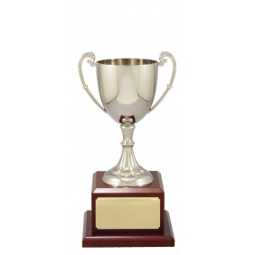 Metal Trophy Cups C0204 - Trophy Land