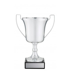 Metal Trophy Cups C0213 - Trophy Land