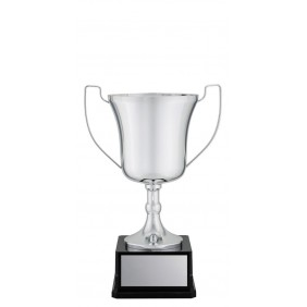 Metal Trophy Cups C0223 - Trophy Land