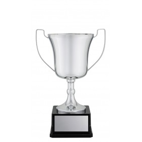 Metal Trophy Cups C0224 - Trophy Land
