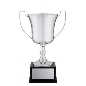 Metal Trophy Cups C0225 - Trophy Land