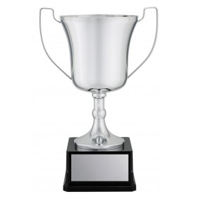 Metal Trophy Cups C0226 - Trophy Land