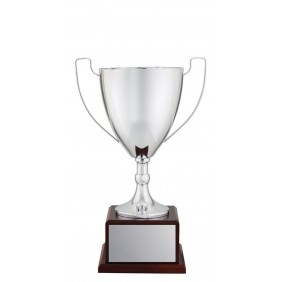 Metal Trophy Cups C0228 - Trophy Land