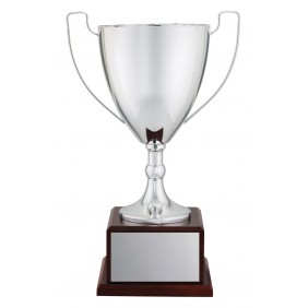 Metal Trophy Cups C0230 - Trophy Land